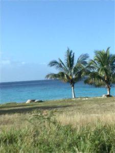 Blick auf einen karibischen Strand