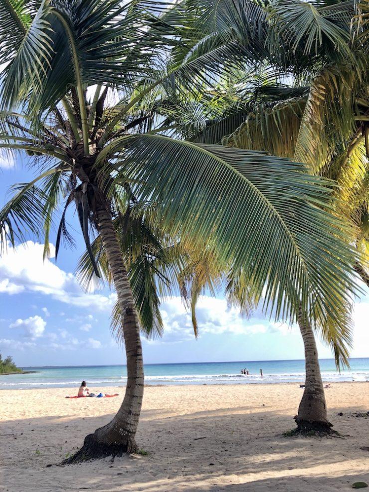 Sandstrand und Palmen in Playa Larga